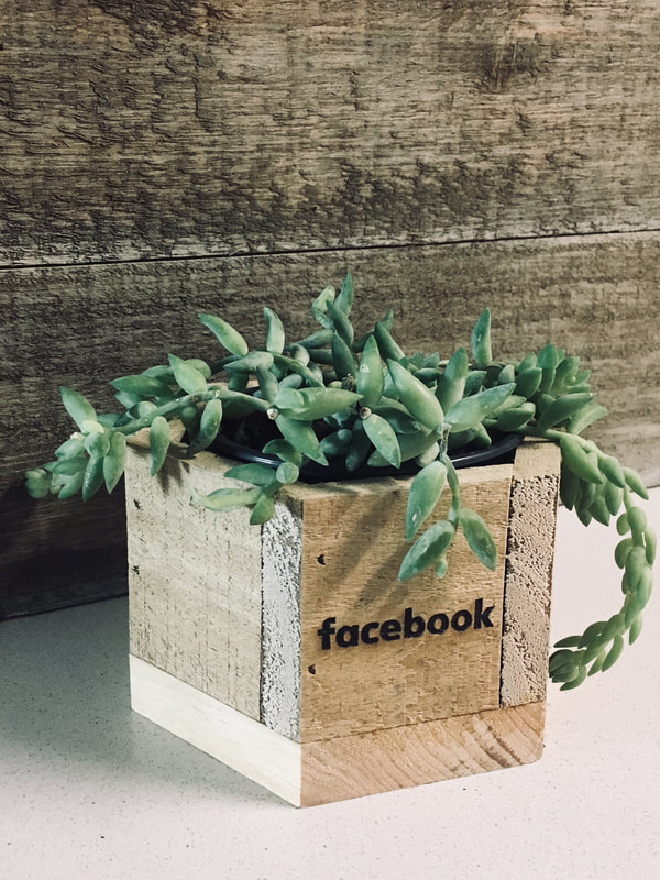 Reclaimed hexagonal planter as customized for Facebook